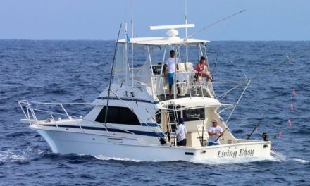 Everything You Need To Know About Aruba Fishing