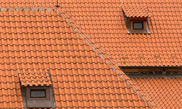 Protecting Your Roof from Wind Damage – Basics and Tips